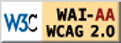 WCAG 2.0 at Level AA